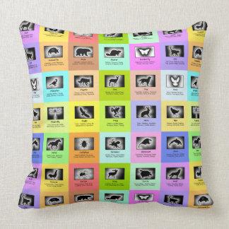 Animal Meanings 25 Spirit Guides Totem Animals Pillow
