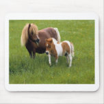 Animal Mothers and Babies (17) Mousepad