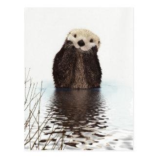 Animal mullido adorable lindo de la nutria postales