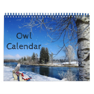 Animal Owl Bird Life Office Home Destiny'S Destiny Calendar