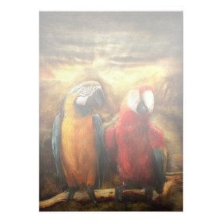 Animal - Parrot - Parrot-dise Invites