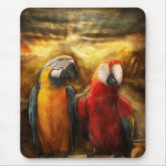 Animal - Parrot - Parrot-dise Mouse Pad