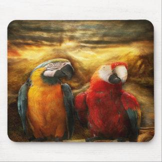 Animal - Parrot - Parrot-dise Mousepads