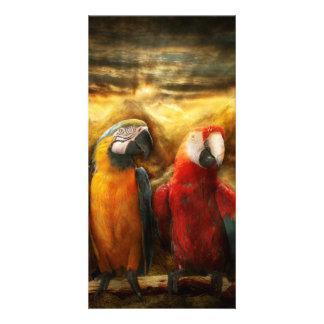 Animal - Parrot - Parrot-dise Photo Card