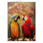 Animal - Parrot - We'll always have parrots Card