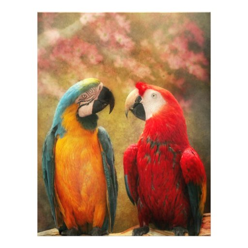 Animal - Parrot - We'll always have parrots Personalized Flyer