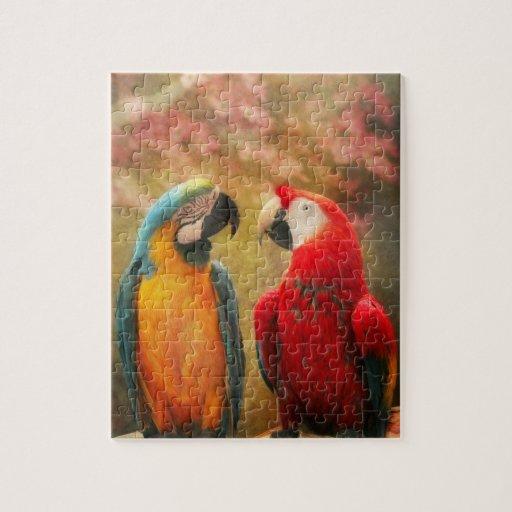 Animal - Parrot - We'll always have parrots Puzzle