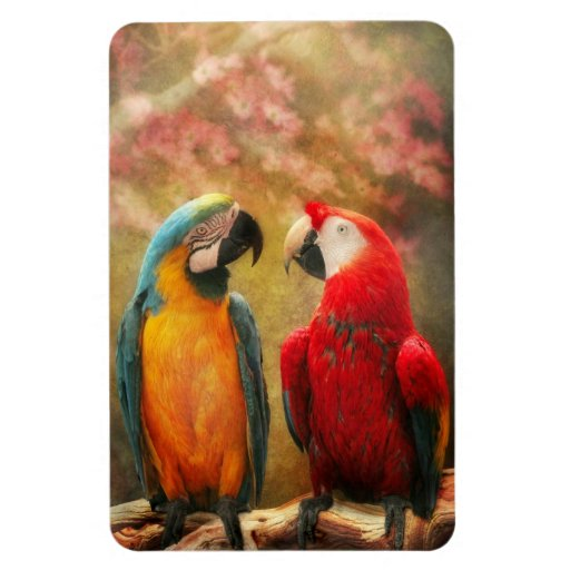 Animal - Parrot - We'll always have parrots Rectangular Photo Magnet