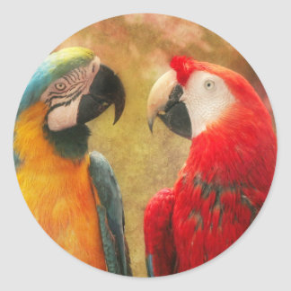 Animal - Parrot - We'll always have parrots Classic Round Sticker