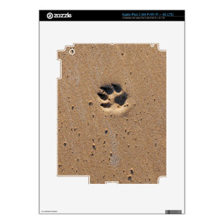 Animal paw prints in sand decals for iPad 3