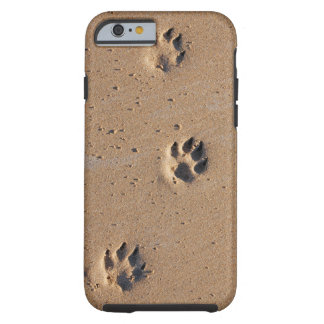 Animal paw prints in sand tough iPhone 6 case