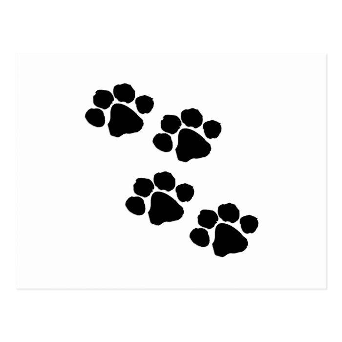 Animal Paw Prints Postcard