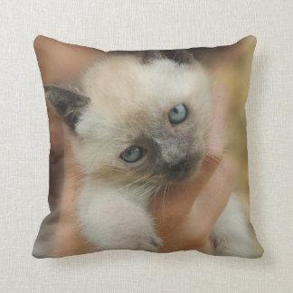Animal Pet Cat Kitten Siamese Face Eyes Cute Throw Pillow