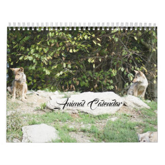 Animal Pets Wildlife Love Destiny Destiny's Calendar