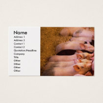 Animal - Pig - Comfort food Business Card