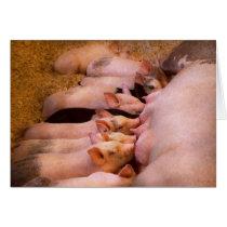 Animal - Pig - Comfort food Card