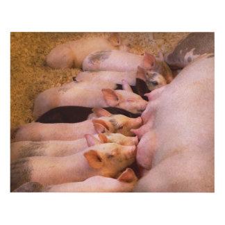 Animal - Pig - Comfort food Panel Wall Art