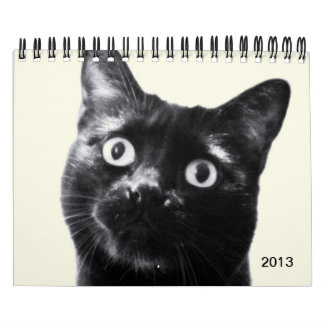 animal portraits, calendar for 2013