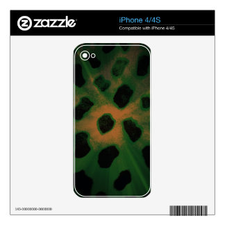 Animal Print Green Black and Yellow LIght Burst Decal For The iPhone 4