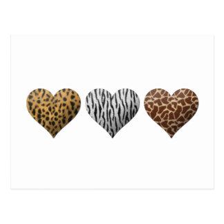 Animal Print Hearts Postcards