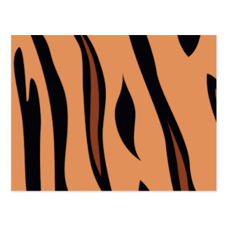Animal Print Tiger Postcard