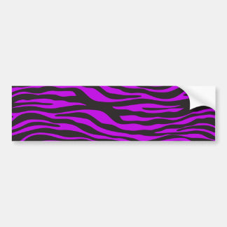 Animal Print, Zebra Stripes - Black Purple Bumper Sticker