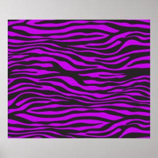 Animal Print, Zebra Stripes - Black Purple Poster