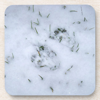 Animal Prints in the Snow Coasters