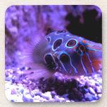 Animal púrpura de los pescados posavasos de bebida