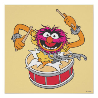 Animal que se estrella a través de los tambores póster