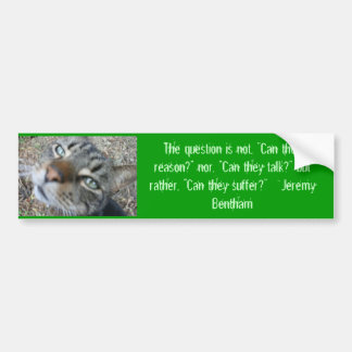 Animal quotes - from Jeremy Bentham bumper sticker Car Bumper Sticker