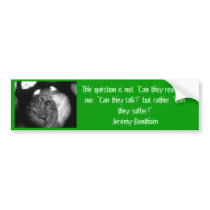 Animal quotes - Jeremy Bentham 2 bumper sticker