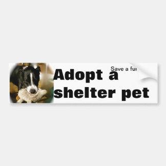 Animal Rescue Adoption Bumper Sticker