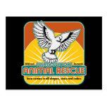 Animal Rescue Bird Postcard
