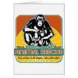 Animal Rescue Chimpanzee Cards