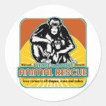 Animal Rescue Chimpanzee Sticker