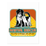 Animal Rescue Dog and Cat Postcards