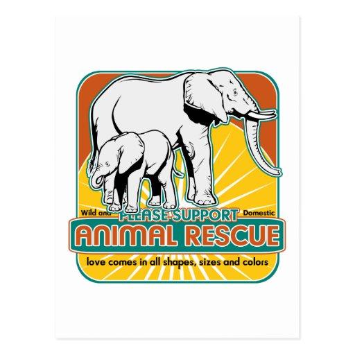 Animal Rescue Elephants Postcard