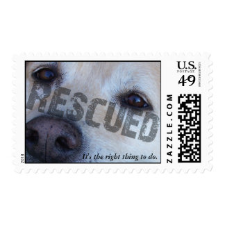 ANIMAL RESCUE: IT'S THE RIGHT THING TO DO STAMP