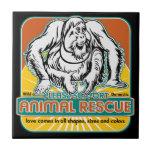 Animal Rescue Orangutan Ceramic Tile