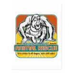 Animal Rescue Orangutan Postcard