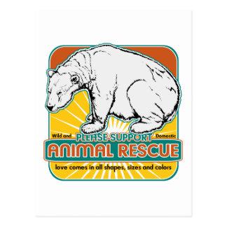 Animal Rescue Polar Bear Postcard