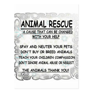 Animal  Rescue Postcard