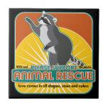 Animal Rescue Raccoon Tiles
