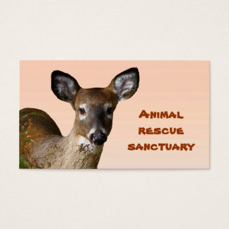 Animal Rescue Sanctuary Business Card