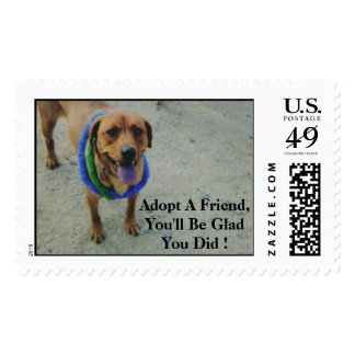 Animal Rescue Series Postage