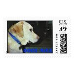 Animal Rescue Series Postage