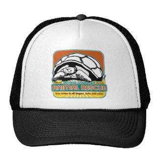 Animal Rescue Turtle Mesh Hats