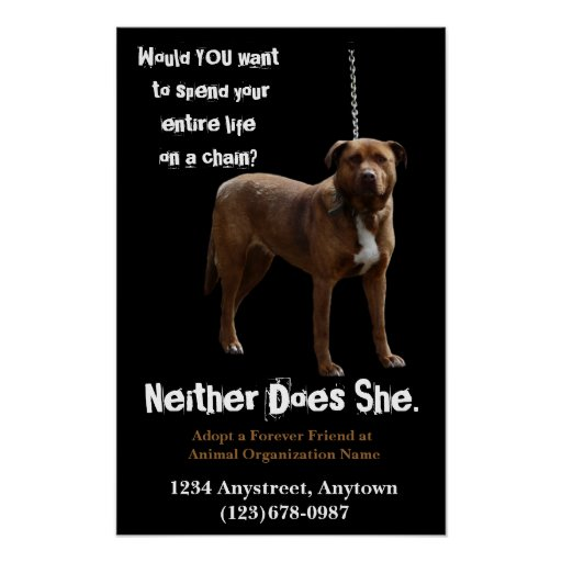 Animal Rights  Adoption and Rescue Poster
