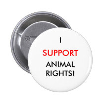 Animal Rights Button, White Button